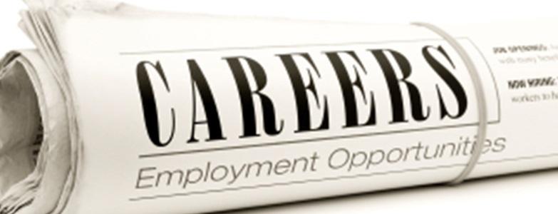 Joburi disponibile