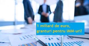 Acordarea de granturi si facilitati de finantare